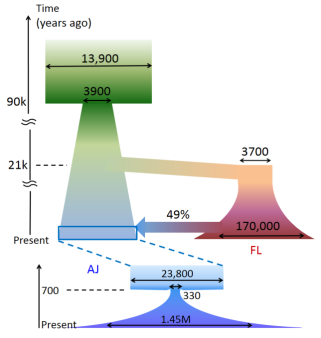 demographic_model